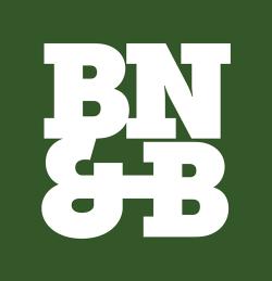 BLOIS, NICKERSON & BRYSON logo